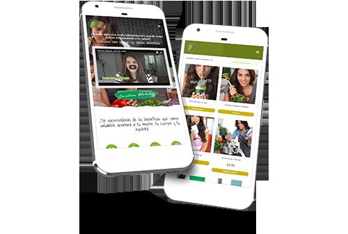 Desarrollo-Web-Miami-Mi-Vida-Verde
